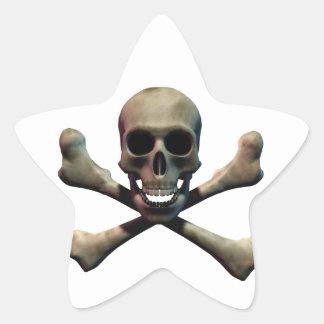 Skull and Crossbones Star Sticker