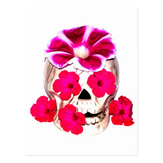 Skull and Hot Pink Flowers Postcard