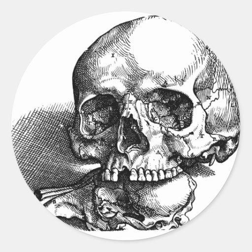 Skull and Jawbones Vintage sketch Sticker