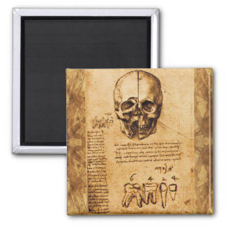 SKULL AND TEETH ,DENTAL CLINIC ,DENTIST Parchment Magnet