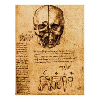 SKULL AND TEETH ,DENTAL CLINIC ,DENTIST Parchment Postcard