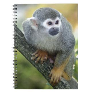 Skull ape notebook