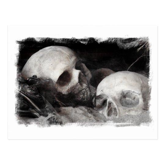 Skull Buddies Postcard