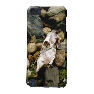 Skull by Uncle Junk iPod Touch (5th Generation) Cases