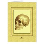 """""""Skull"""" Cards"""