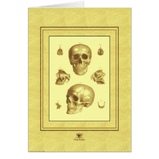 """Skull Collection"" Card"