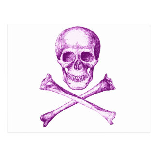 Skull & Cross Bones. Postcard