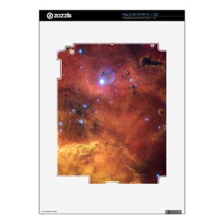 SKULL & CROSSBONES iPad 2 SKIN