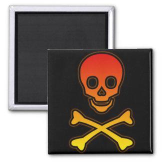 Skull/Crossbones Magnet