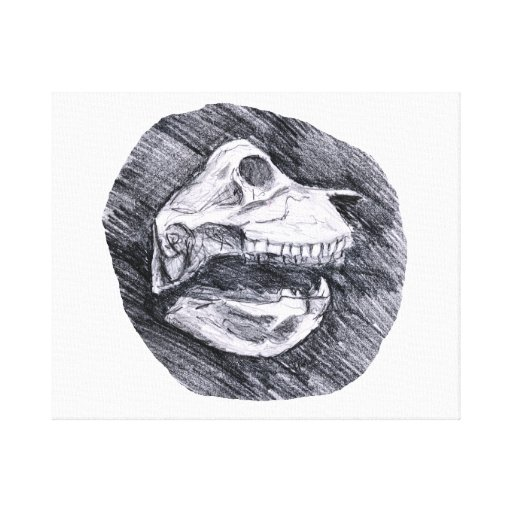 Skull drawing imaginary animal sketch canvas print