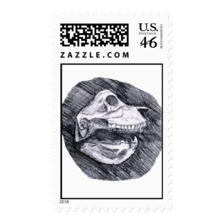 Skull drawing imaginary animal sketch postage