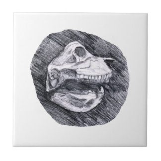 Skull drawing imaginary animal sketch tile