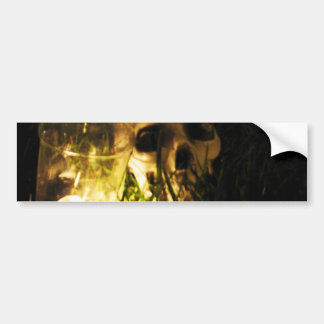 Skull Fire Bumper Sticker