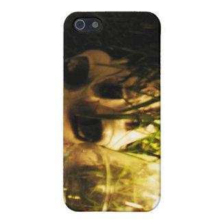 Skull Fire iPhone SE/5/5s Case