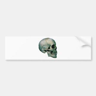 Skull From Profile Bumper Sticker