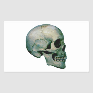 Skull From Profile Rectangular Sticker