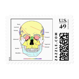 Skull (front) stamps