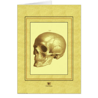 """Skull"" Greeting Card"
