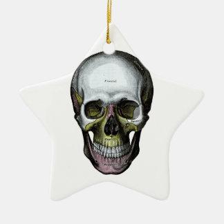 Skull - Halloween - Med School Ceramic Ornament