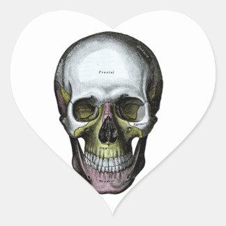Skull - Halloween - Med School Heart Sticker