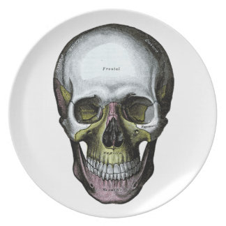 Skull - Halloween - Med School Party Plate