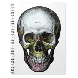 Skull - Halloween - Med School Spiral Notebooks