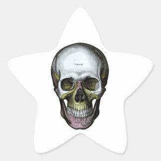Skull - Halloween - Med School Star Sticker