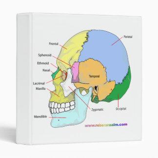 Skull (lateral) binder