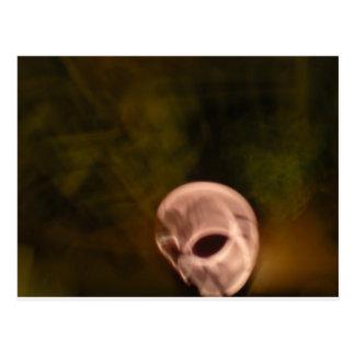 skull_lg postcard
