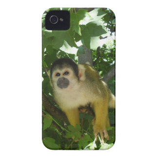 Skull little monkey mobile phone covering iPhone 4 Case-Mate case