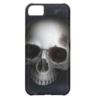 Skull, Lower Jaw Removed Cover For iPhone 5C