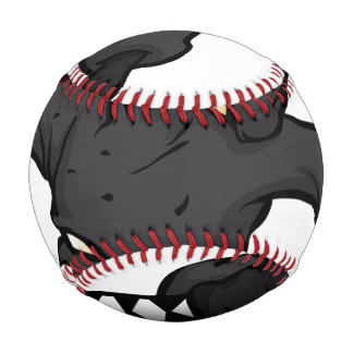 skull ninja cartoon. baseball