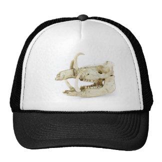 Skull of wild boar trucker hat