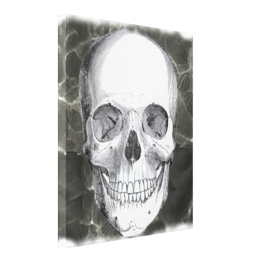 Skull on black 20x24 canvas print