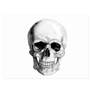 Skull Post Card