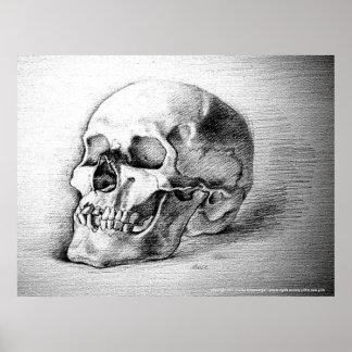 Skull Poster Print