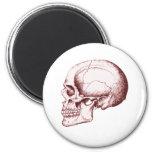 Skull Sid eRed Refrigerator Magnets