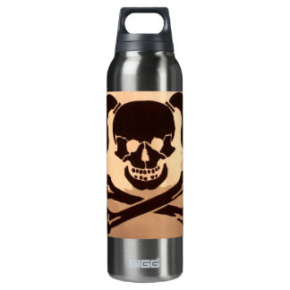 skull 16 oz insulated SIGG thermos water bottle