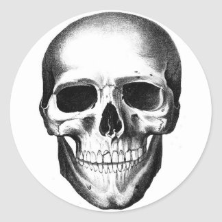 Skull Skeleton Head Scary Creepy Halloween Classic Round Sticker