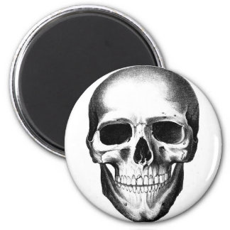 Skull Skeleton Head Scary Creepy Halloween 2 Inch Round Magnet