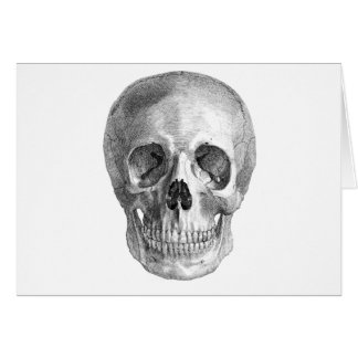 Skull Sketch perfect for Halloween party needs! Stationery Note Card