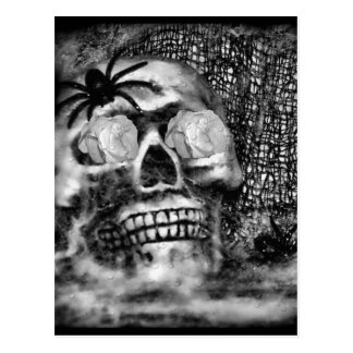 Skull-Spider and Rose-2012 Postcard