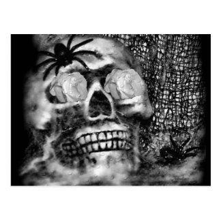 Skull-Spider and Rose-2012 Postcards