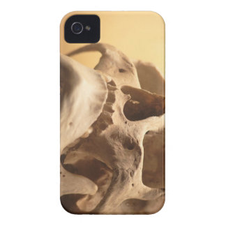 Skull Spooky Halloween Classy Human Skull Design iPhone 4 Cover