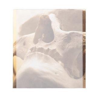 Skull Spooky Halloween Classy Human Skull Design Notepad