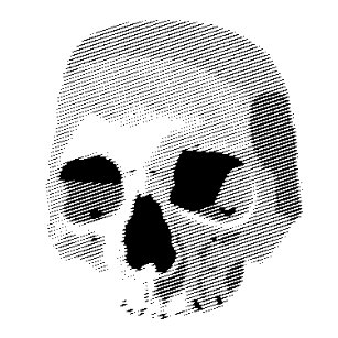 Skull And Bones Rubber Stamps