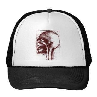 skull study trucker hat