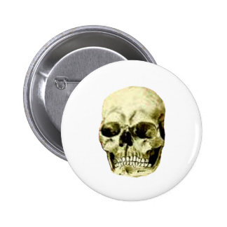 Skull The MUSEUM Zazzle Gifts Pinback Button
