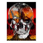 Skull times three post cards