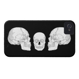 Skull Trio Blackberry Case